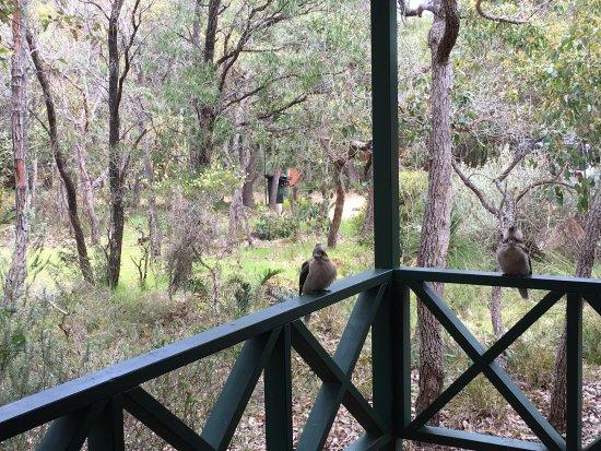 Cowaramup, Australien: photo0.jpg