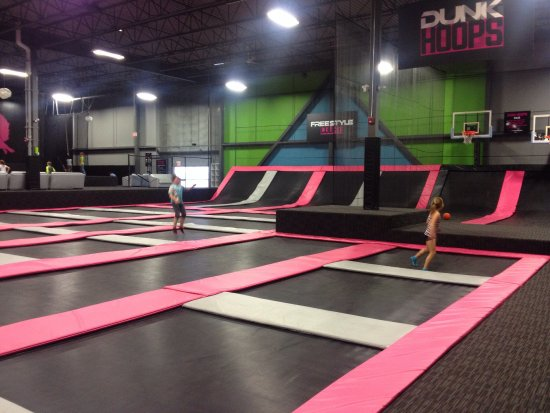 trampolines everywhere picture of flying squirrel. Black Bedroom Furniture Sets. Home Design Ideas