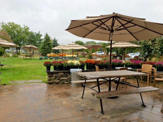 Sharon, ماساتشوستس: Outdoor picnic tables