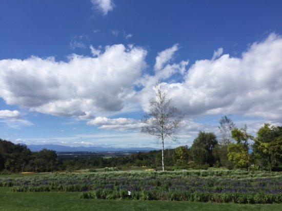 Makubetsu-cho, Japan: 空がとっても気持ちいい。眺め良し!