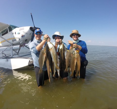 Barataria, LA: Limit on redfish