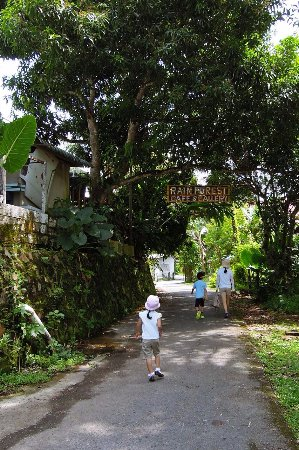 The Brooke Gallery: Beginning of walking trail to the Fort