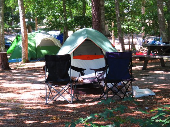 Atlantic Oaks Campground: Tent Site
