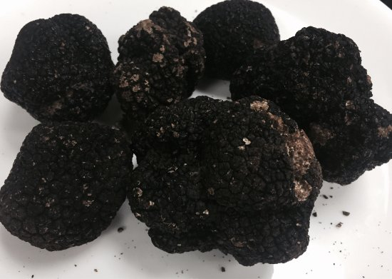Surfside, FL: Amazing black truffle