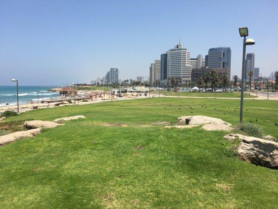 Old Tel Aviv Port Area: view of Tel Aviv from Old Port