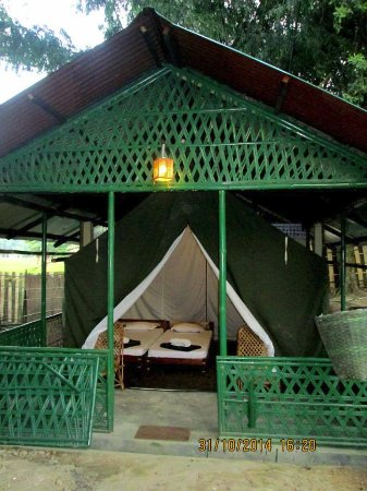 Nature Hunt Eco Camp, Kaziranga National Park: Double Bed Permanent Tent with Attached Western Style Toilet Bathroom