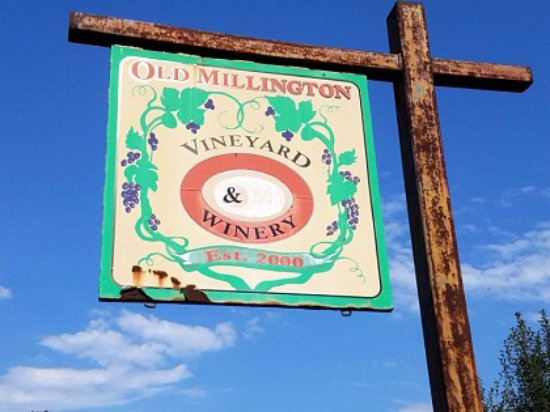 Millington, TN: Vineyard Sign