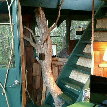 Treehouse Skye: Treehouse Skye