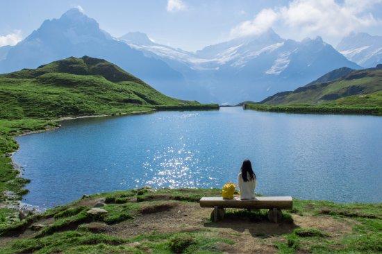 Grindelwald, Suiza: photo1.jpg