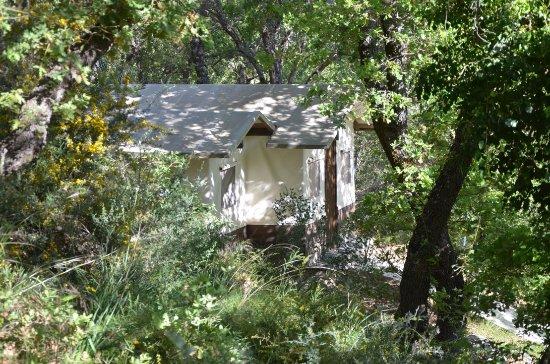 Wild Nature Eco-Lodge Camp