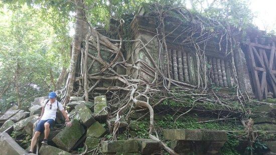Провинция Сием Рип, Камбоджа: DSC_0543_large.jpg
