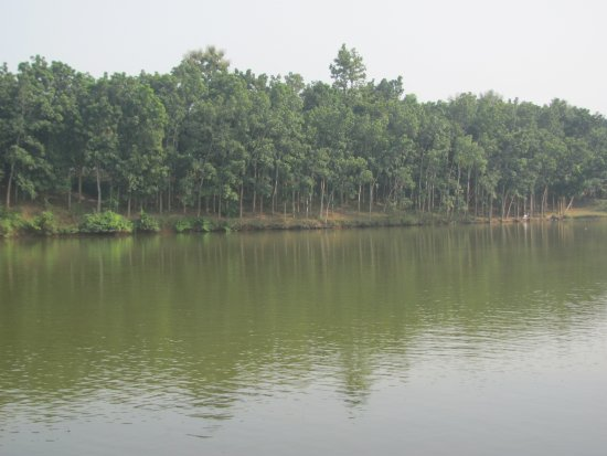 The lake in Gajni, Sherpur