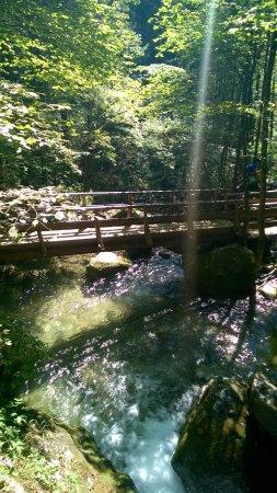 Wander- u. Wasserwelt Myrafälle