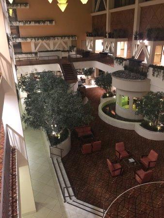 Hilton Stockton: photo0.jpg