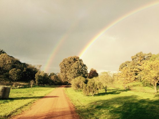 Mudgee, Australië: Wildwood at the end of the rainbow!