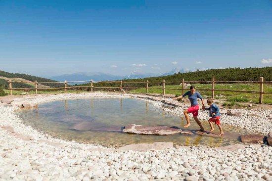 Collalbo, Italia: Laghetto Kneipp al Corno del Renon