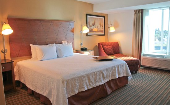 Hampton Inn Hampton-Newport News: King Guest Room