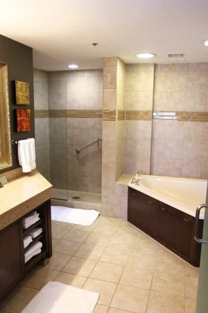 DoubleTree by Hilton Rochester / Mayo Clinic Area: King Large 2 Room Suite, Bath