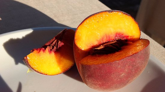 Hotel Borgo Pantano: The biggest peach EVER!
