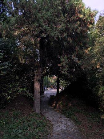 Liaozhai Park: photo0.jpg