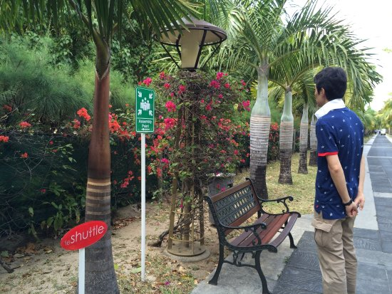 Imagen de Beachcomber Dinarobin Hotel Golf & Spa