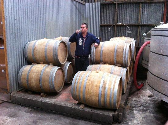 Gisborne, Selandia Baru: Jeff tasting his latest vintage.