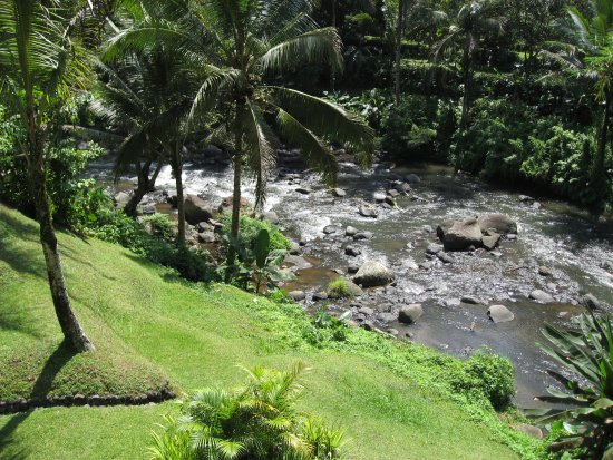 Sayan, Indonesia: View of our Villa Garden and the River