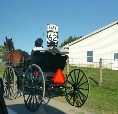 Berlin oh picture of amish country ohio tripadvisor for Amish country things to do