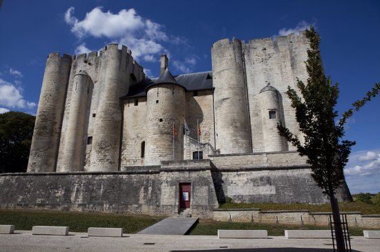 le donjon de niort 2017 conseils pour votre visite tripadvisor. Black Bedroom Furniture Sets. Home Design Ideas