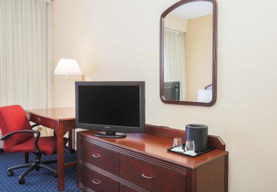Φλιντ, Μίσιγκαν: Suite Room Amenities