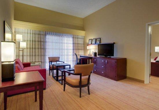 Sandston, Вирджиния: King Suite Living Room