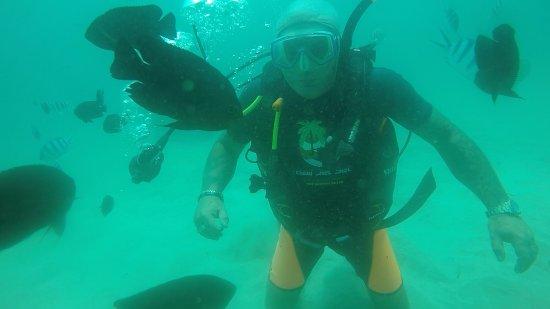 Bali Jet Set Dive and Marine Sports : photo8.jpg