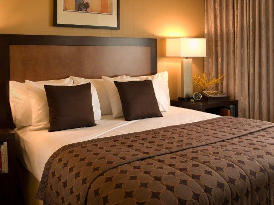 Embassy Suites by Hilton Hotel Santa Clara: King Bedroom