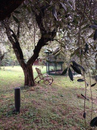 Villa Rosa Camuna: photo1.jpg