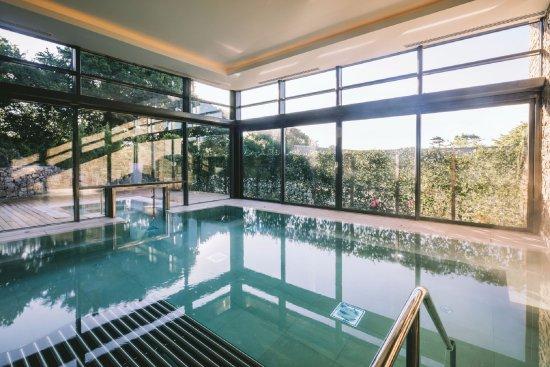 Elegant Swimming Pool with Jacuzzi Design