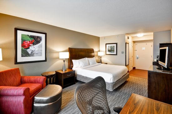 Temple Terrace, FL: Guest Room with a King Bed