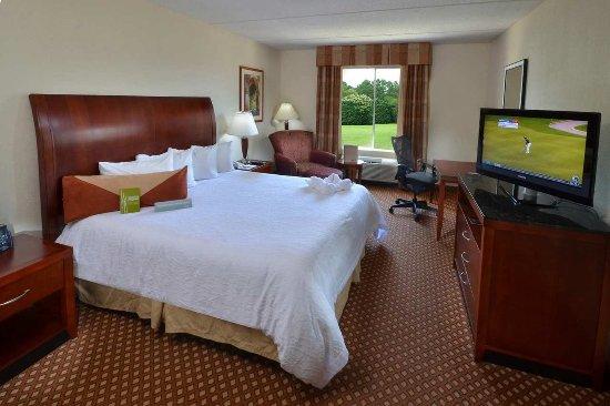 Hilton Garden Inn Greensboro: King Bedroom
