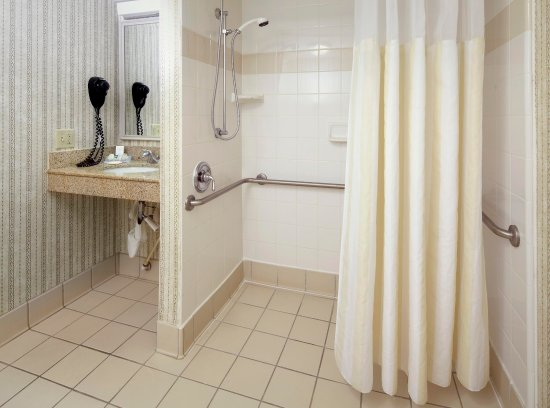 Hilton Garden Inn Tampa East/Brandon: Accessible with Roll In Shower