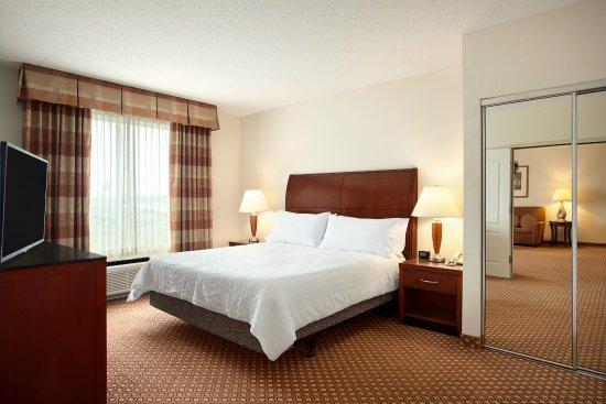 Hilton Garden Inn Harrisburg East: King Suite