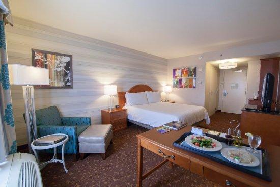 هيلتون جاردن إن ألبوكيركي إيربورت: 1 King Bed Standard Room