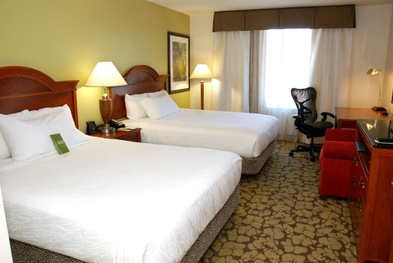 Hilton Garden Inn Temple: Queen Bed