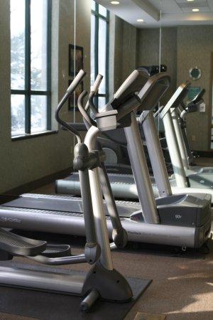 Hilton Garden Inn Worcester: Fitness Center