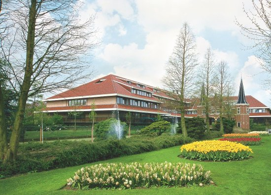 Alphen aan den Rijn, Holland: Avifauna - Hotel