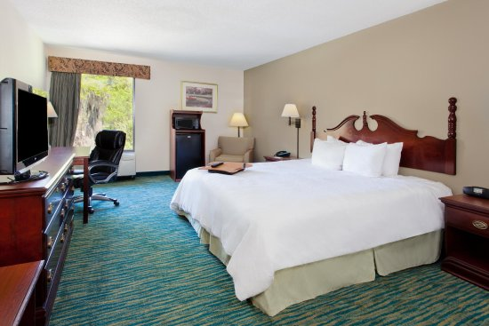 Lake Park, GA: Accessible King Guest Room