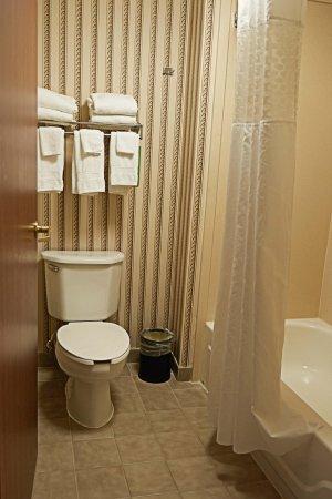 Hampton Inn Scottsburg: Double Room Bathroom