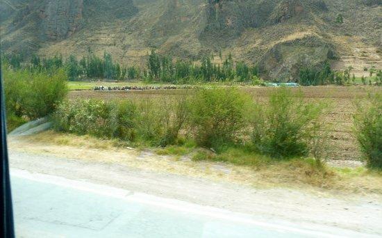 Region Cusco, Peru: Campesinos in sosta per il pranzo nella valle sacra