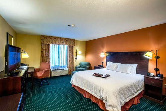 Elk Grove, CA: King Room