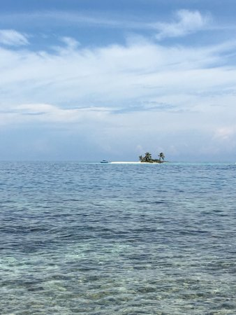 Ocean Motion Tours: Silk Caye from a distance.