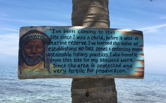 Placencia, Belice: A really great sign nailed to a palm tree on Silk Caye.