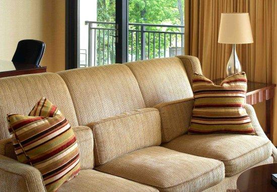 Dunwoody, Τζόρτζια: Hospitality Suite - Living Area